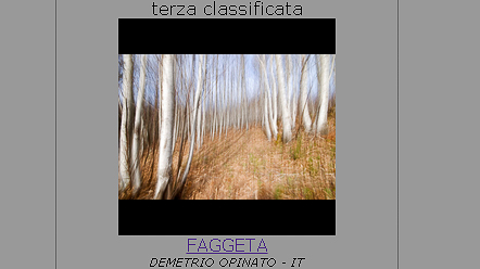 Faggeta Terza Classificata