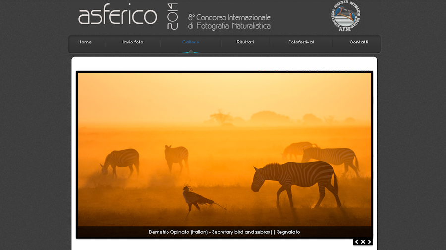 """Secretary Bird And Zebras"" Segnalata All'Asferico Photoconte​st 2014"